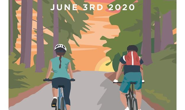 Happy World Bicycle Day 2020!